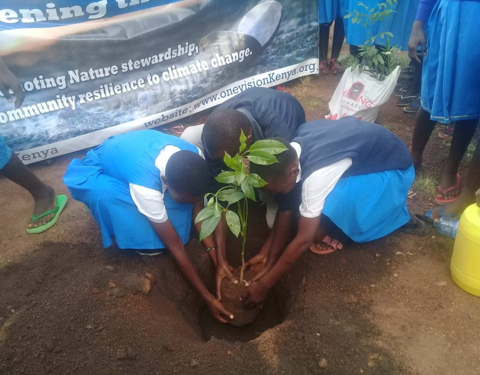 Greening the mind through tree planting